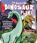 Amazing Dinosaur Plant