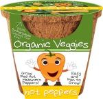 Organic Veggies - Hot Peppers