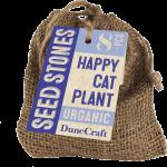 Seed Stones Happy Cat Plant