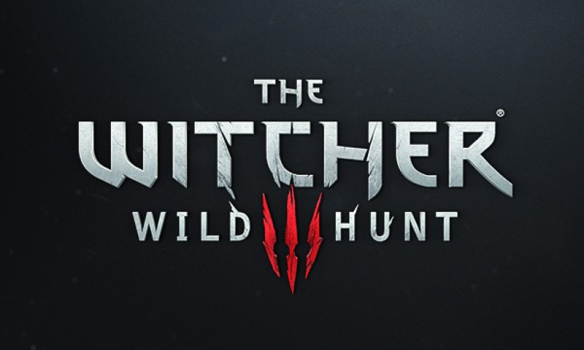 The Witcher 3 May Delay