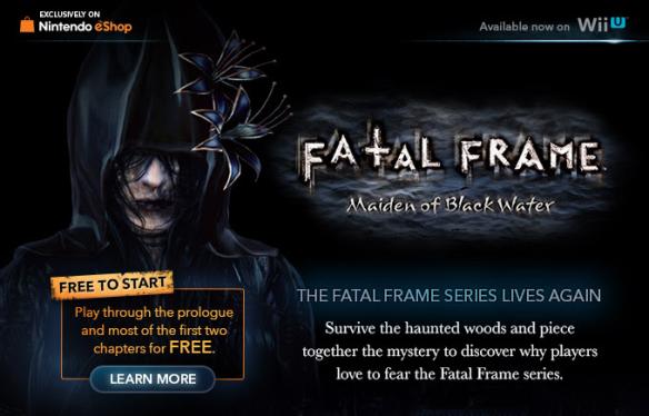 Fatal Frame banner