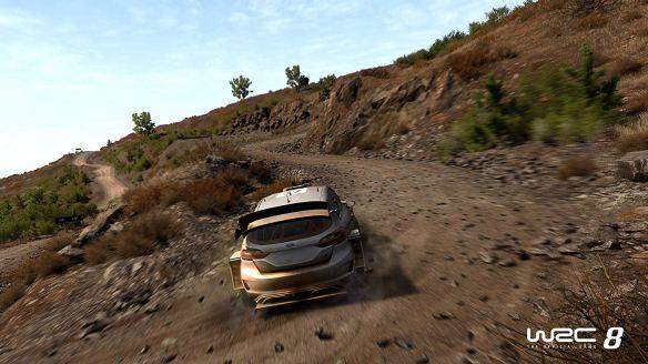 WRC 8_04